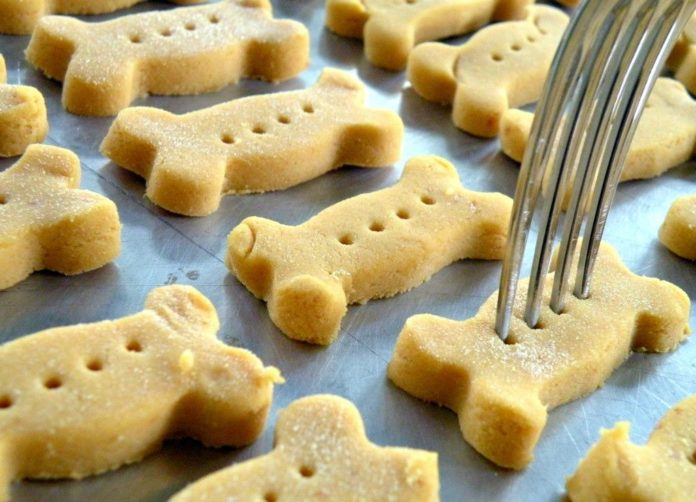 Biscuits pour Chiens au thermomix